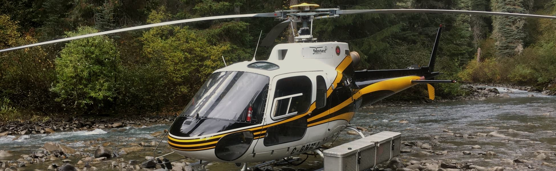 helicopter charter services environmental survey