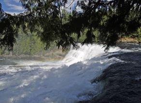 Dawson Falls Wells Grey Clearwater